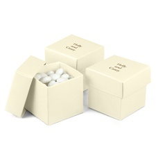 Ecru Shimmer Two-Piece Favor Boxes