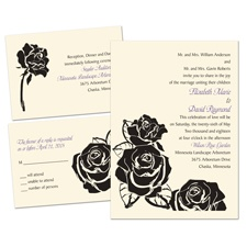 Lavish Rose Ecru 3 for 1 Wedding Invitation
