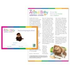 Adopt a Baby Beaver