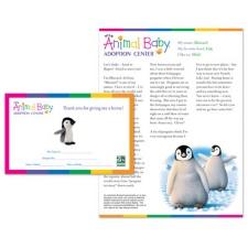 Adopt a Baby Penguin