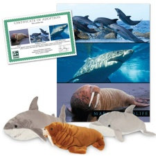 Marine Wildlife Series 2 Collection