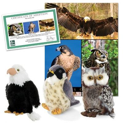 Birds of Prey Wildlife Collection