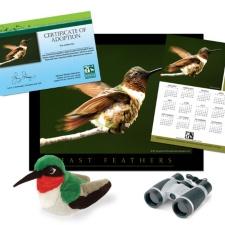 Adopt a Ruby-Throated Hummingbird