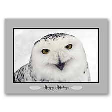Snow Visitor Card