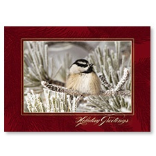 Fresh Snow Card