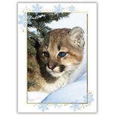 Young Cub Card
