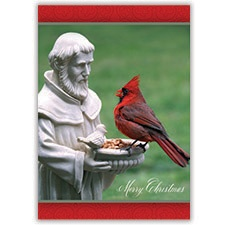 St. Francis and the Cardinal Card