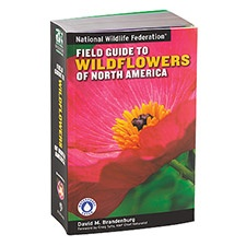 NWF Field Guide to Wildflowers
