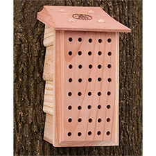 Mason Bee Lodge