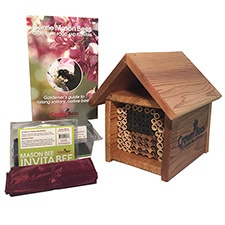 NWF Bee Cabin