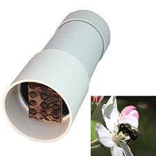 Spring BeeHut