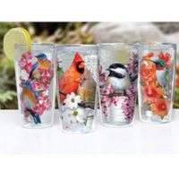 Colorful Bird Tumblers Set of 4