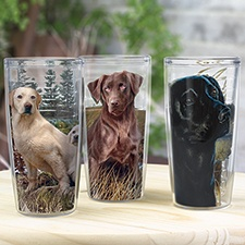 Lab Tumblers Set of 3