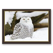 Trees for Wildlife Card - Snowy Owl