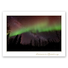 Trees for Wildlife Card - Northern Lights