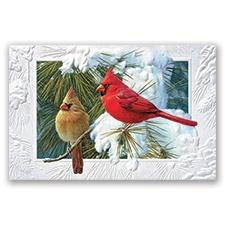 Candid Cardinals Card