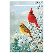 Winter Color Card