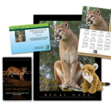 Adopt a Mountain Lion and receive
