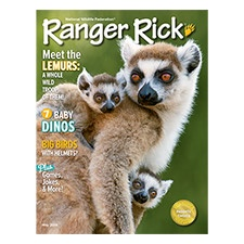 Ranger Rick Magazine May 2014