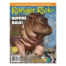 Ranger Rick Magazine May 2015