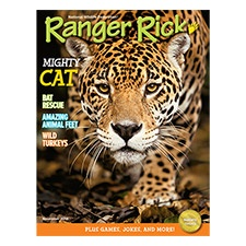 Ranger Rick Magazine Nov 2014