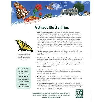 Attracting Butterflies Tip Sheet
