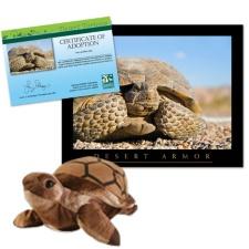 Adopt a Desert Tortoise