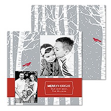 Birch Forest Photo Holiday Card