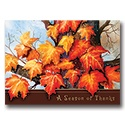 Maple Leaves Card