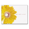 Daisy Delight Card